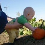 Telia picks a pumpkin